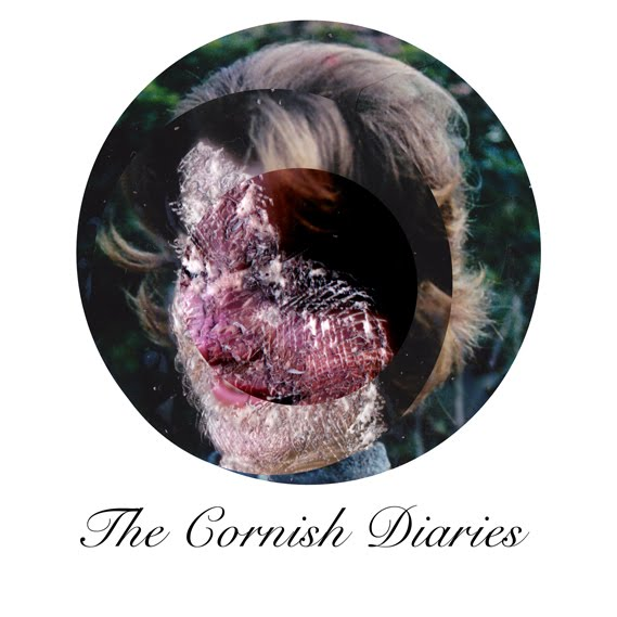 The Cornish Diaries