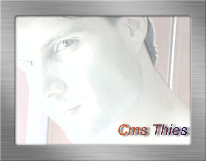 Cms Thies