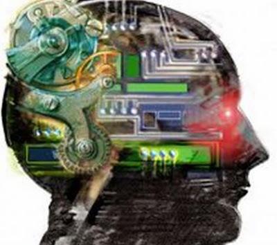 funciones del cerebro humano. un cerebro humano
