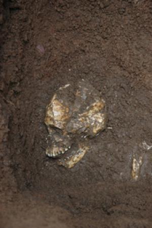 [esqueletos-cabezas-oceania.jpg]