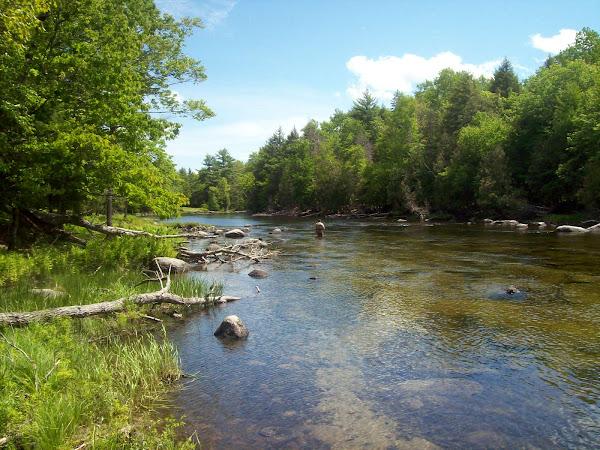 Grand Lake Stream