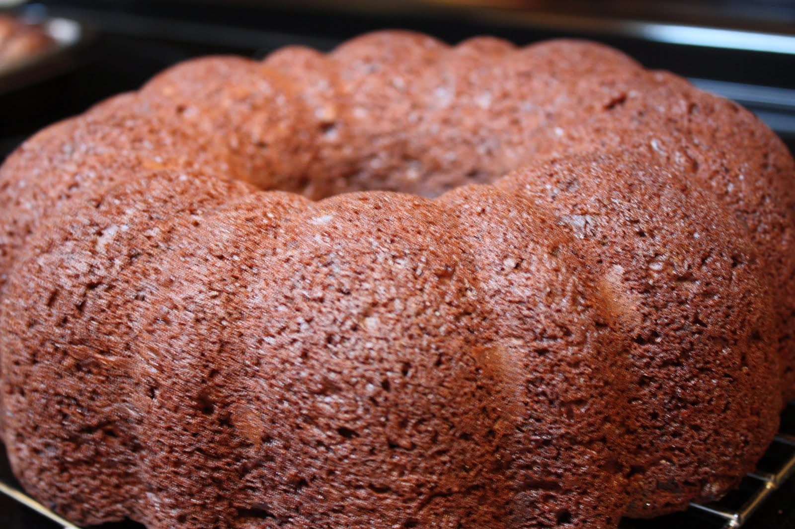 Darn Good Chocolate Bundt Cake