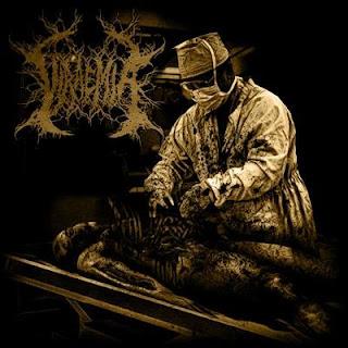 Viraemia by Viraemia (EP, Technical Death Metal): Reviews ...
