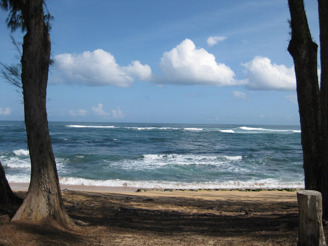Anini Beach