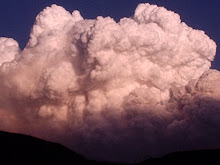 Clouds of Smoke from a Forest Fire at Sunset in South Central Montana in 2008