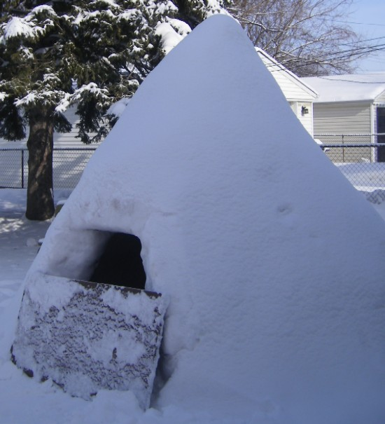[Igloo1-B.JPG]