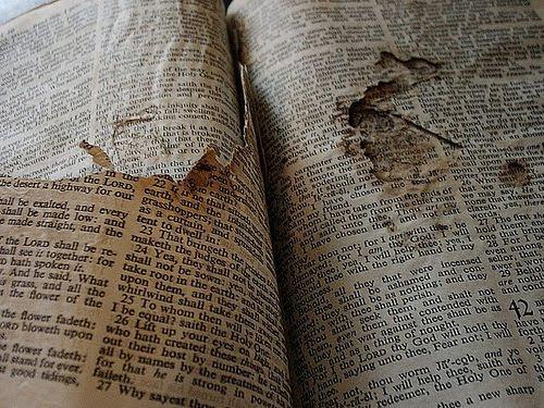 http://1.bp.blogspot.com/_FOIrYyQawGI/TO1N2hczHqI/AAAAAAAADFQ/t_6Or6RzWKQ/s1600/BibleRipped.jpg
