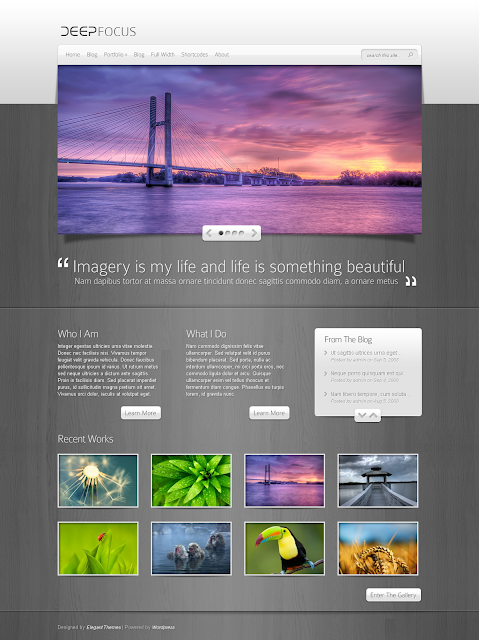 DeepFocus Gallery Wordpress Theme Free Download by ElegantThemes.