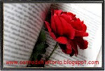 Blogs/Sites literatura