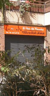 Gossets en valencià