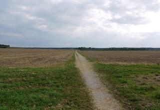Bild 5: Blick von Norden Richtung Keltenschanze Buchendorf