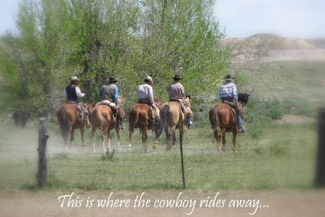 This is where the cowboy rides away...