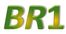 Acesse o portal BR1