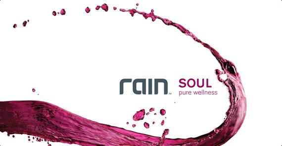 Soul pure wellness price - 1