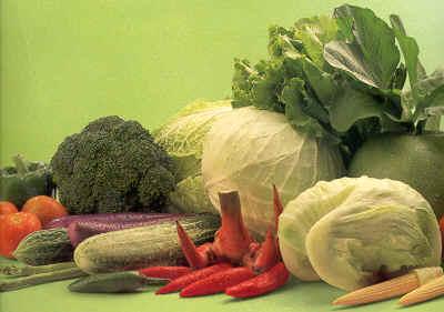 Nama Latin Sayuran
