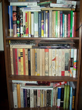A few books upon the shelf.