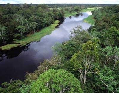 Destino Turístico Nor Amazónico - Notiviajeros.com