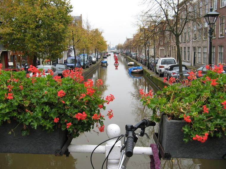 florido canal