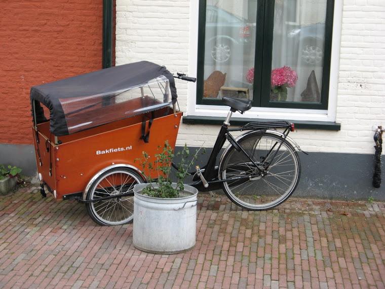Bici carrozada