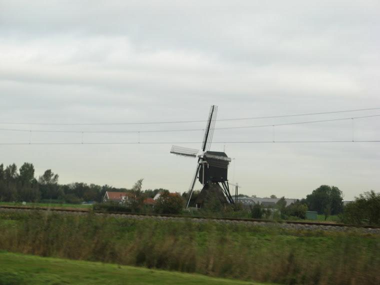 Molino en la llanura holandesa