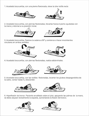 fisioterapia de espalda: