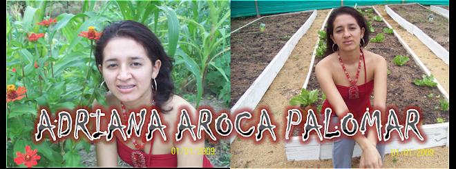 Adriana Aroca Palomar