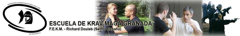 Krav Maga - Granada (FEKM-ESPAÑA)