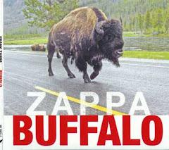 Zappa – Buffalo