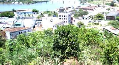 reflorestamento de encostas na cidade de ilheus é um tema do forum ambiental do sul da bahia