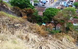 queimadas nas encostas é um dos temas do forum ambiental do sul da bahia
