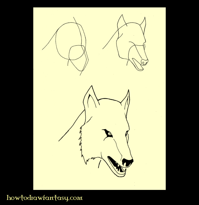 how to draw a wolf head on