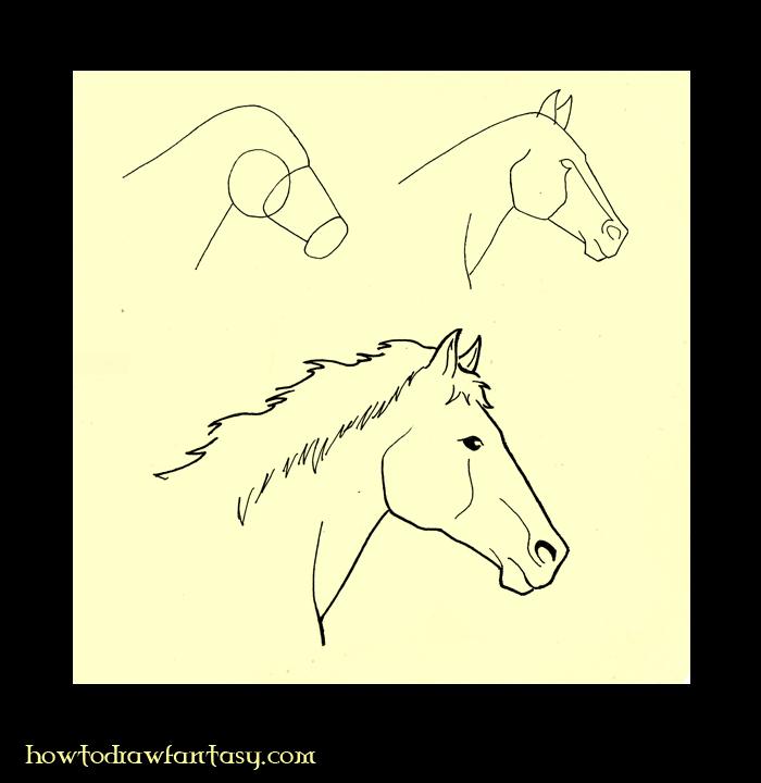 Besoin d 39 aides pour dessin - Dessiner des animaux facilement ...