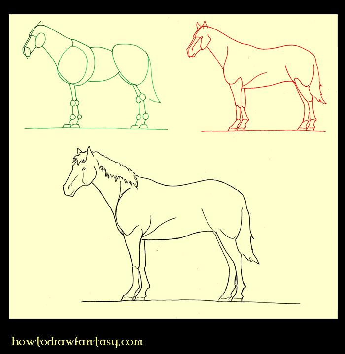A propos cap comment apprendre la photo comment party - Apprendre dessiner cheval ...
