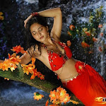 Anushka New Photos