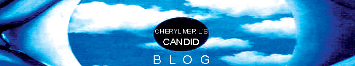 Cheryl Meril&#39;s Candid Blog- Nob Hill Notary