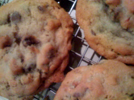 BIG Toasted Pecan Chocolate Chip Cookies