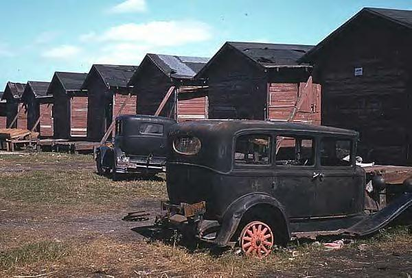 Broken down old cars by condemned houses of migrant farm workers 1941