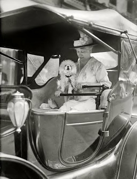 Washington, D.C., 1915. Mrs. Eleanor Foster Lansing in auto
