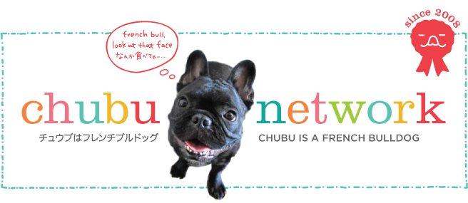 chubu network