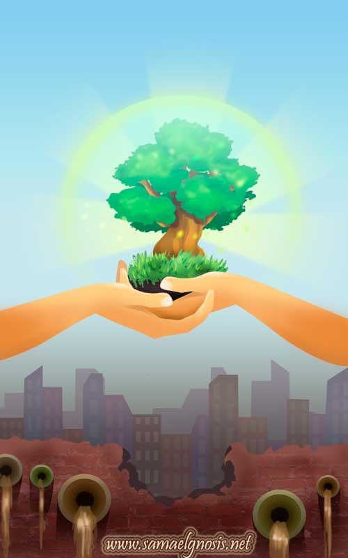 el blog de rosa lopez  ecolog u00eda contra contaminaci u00f3n