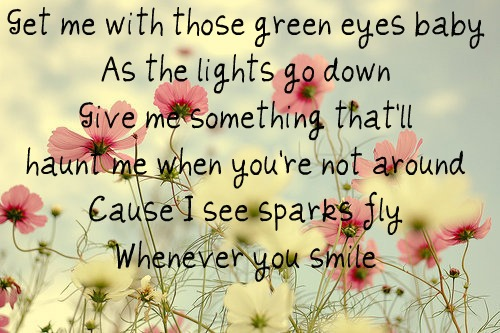 Sparks Fly ~Taylor Swift picture photo weheartit flowers pretty