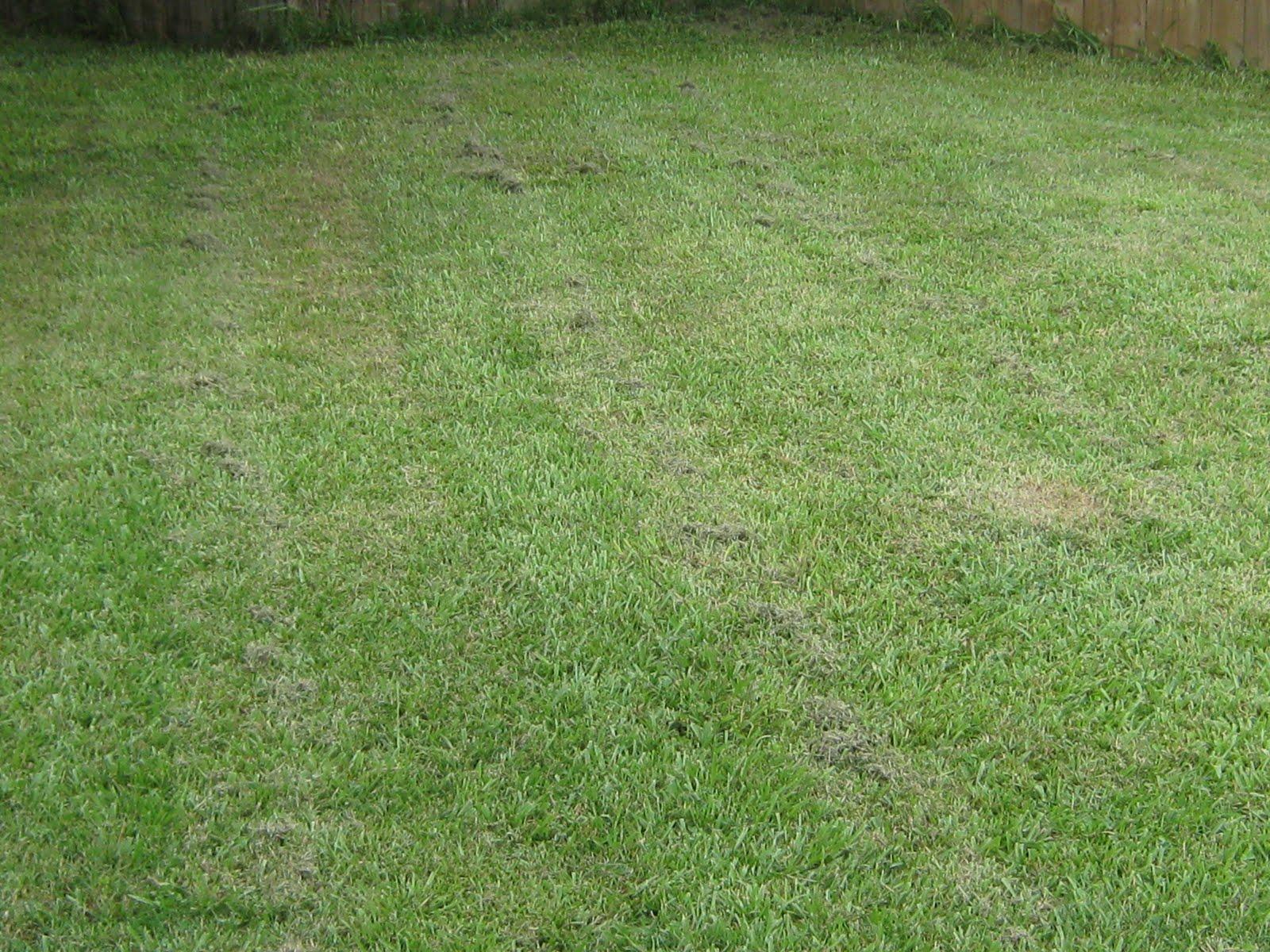 Lawn Cutting Patterns 171 Free Patterns