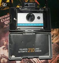 classical polaroid~