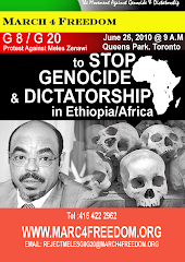 MARCH AGAINST MELES ZENAWI