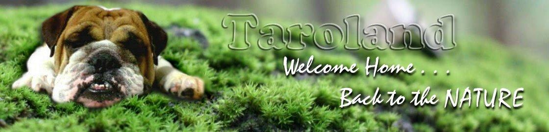 Taroland