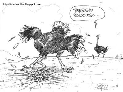 struzzi e terreno roccioso