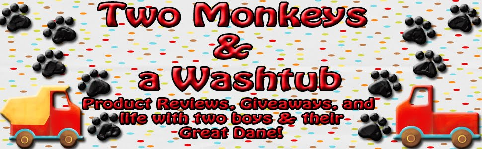 Two Monkeys & A Washtub