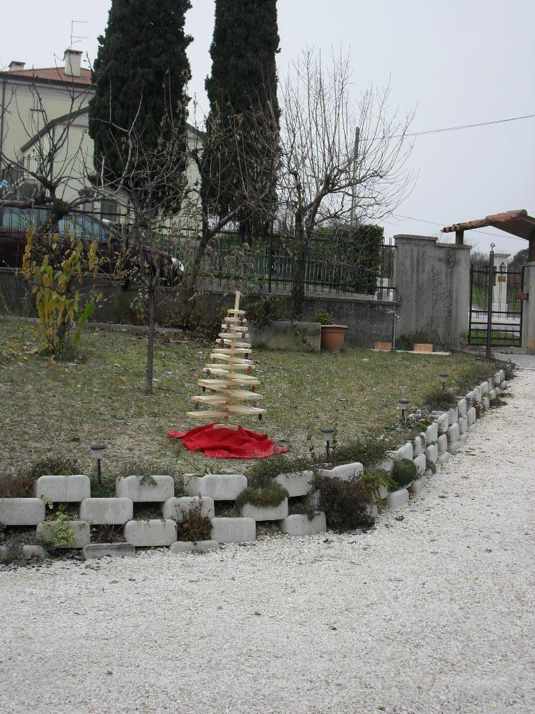 Un alberello in giardino - Alberello da giardino ...
