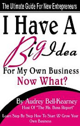 I Have A Big Idea For A Business Now What?