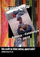 vacances en pau 2010